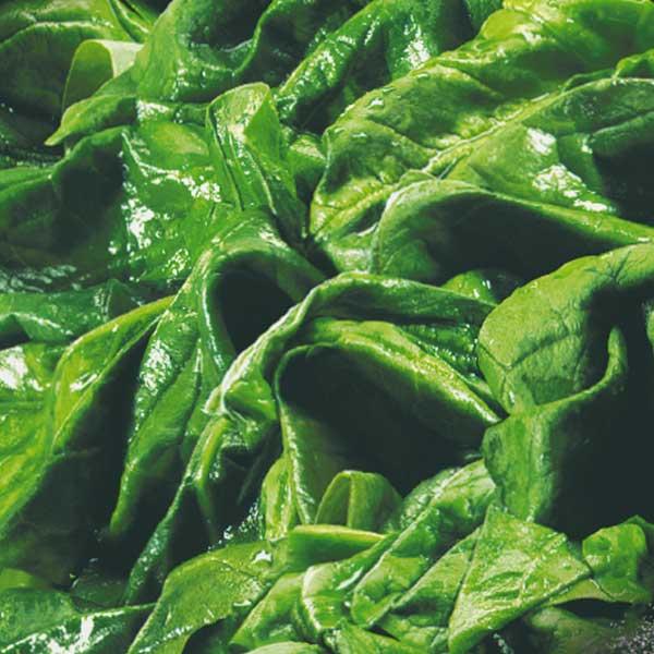 Gemüse Blattspinat Juetro Tiefkühlkost