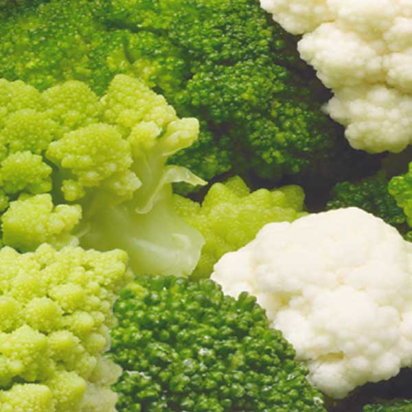 Gemüse Gemüsemischung mit romanesco Jütro Tiefkühlkost