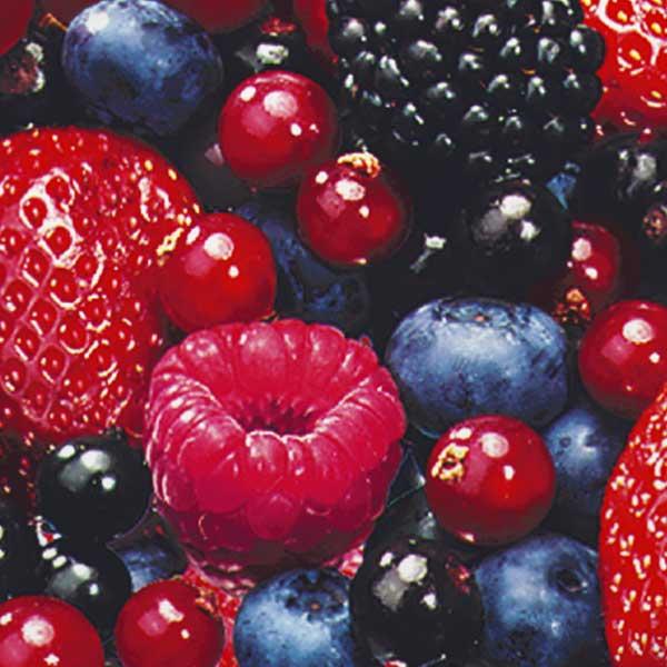 Obst Beeren-Cocktail Jütro Tiefkühlkost