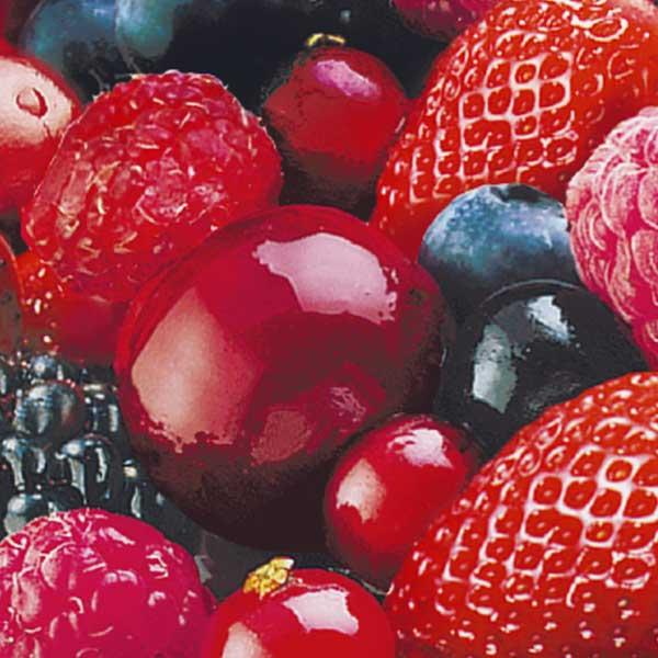 Obst Beeren Mischung Jütro Tiefkühlkost