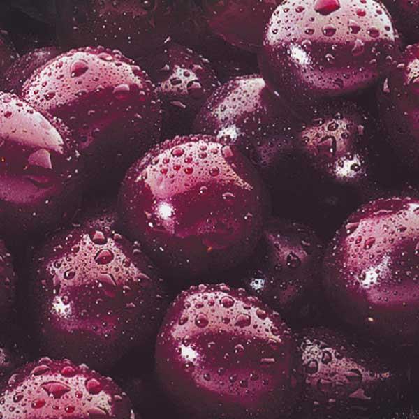 Obst Sauerkirschen Jütro Tiefkühlkost