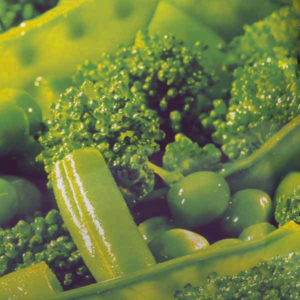 Fertiggerichte Gemüsemischung Broccoli Bohnen Jütro Tiefkühlkost